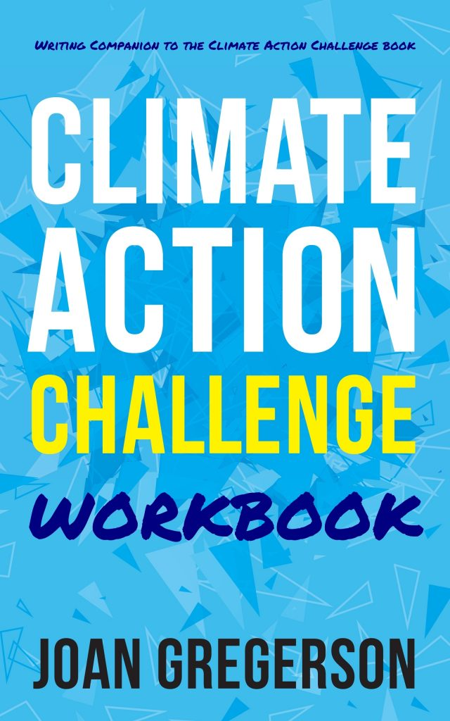 Climate Action Challenge Workbook